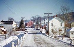 Snowy Honey Grove