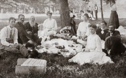 Shaddox Family Picnic: c. 1905