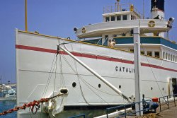 SS Catalina: 1965
