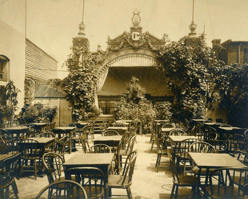 Beer Garden Roof #1