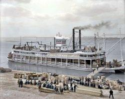 Louisville Levee (Colorized) 1905