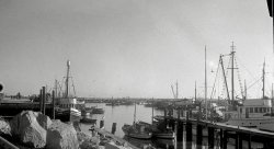 Fish Harbor: 1933