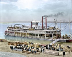 Louisville Levee (Colorized): 1905