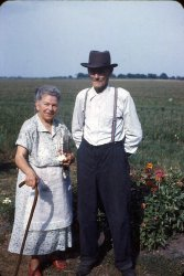 Oldest Couple: 1951