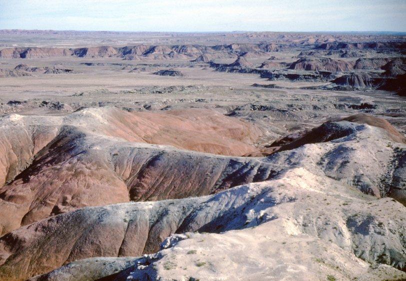 Painted Desert: 1951