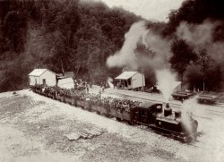 Train at Teepookana Tasmania: 1898