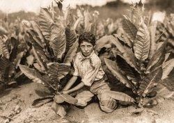 Tobacco Tim: 1917