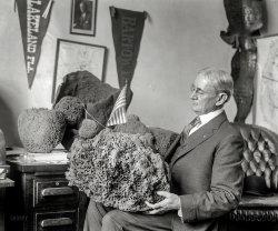 Patriotic Poriferan: 1920