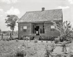 A Little Cottage: 1938
