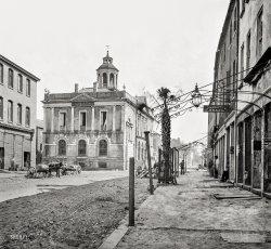 Palmetto Shade: 1865