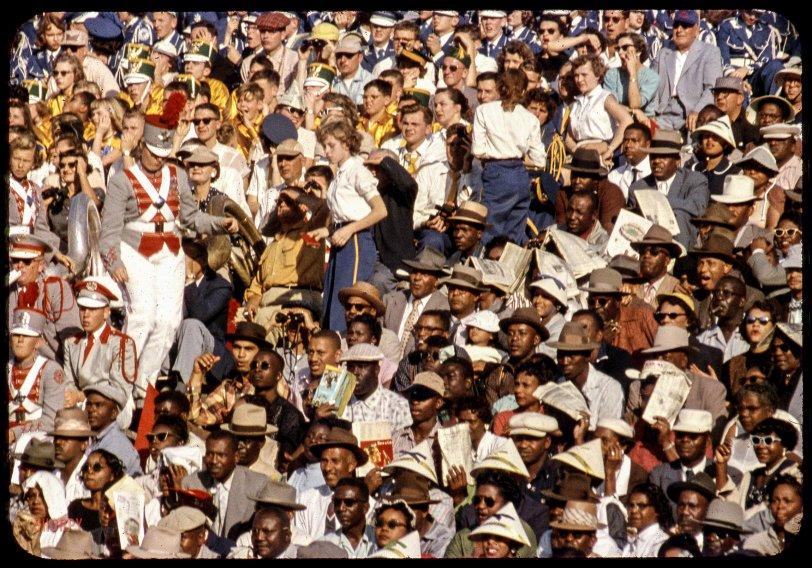 Florida Football: 1955