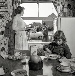 Working Dad: 1955