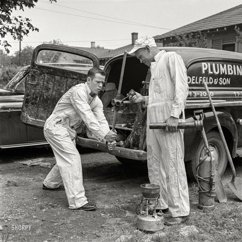 Delfeld & Son: 1954