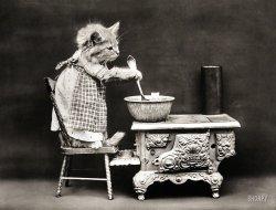 Canary Soup: 1914