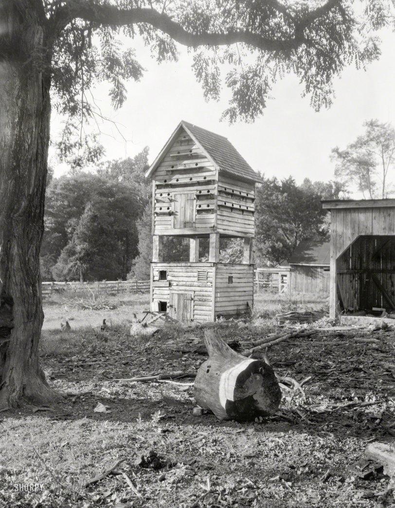 Coop de Ville: 1935