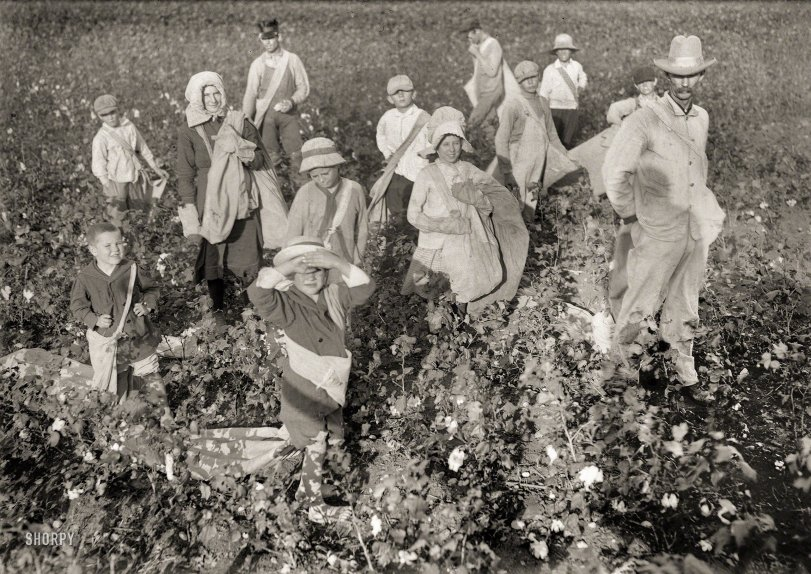Waxahachie Pickers: 1913