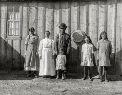 Meet the Rommels: 1915