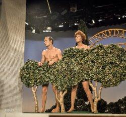 Nine O'Clock Nudes: 1967