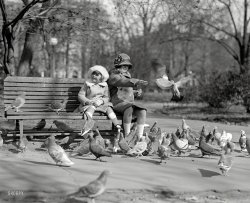 The Birds: 1923