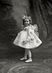 Butterfly Princess: 1900