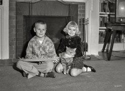 Fireside Cats: 1955