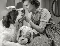 Betty Loves Bernie: 1954