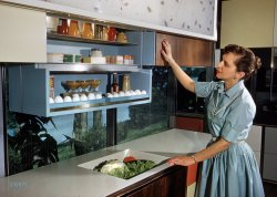 Future Fridge: 1959
