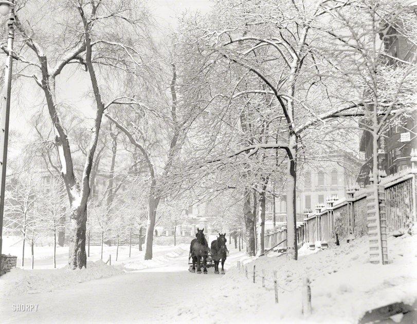 Winter Light: 1920