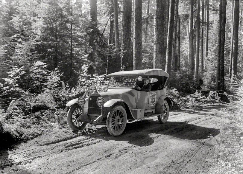 Scout Kar: 1918