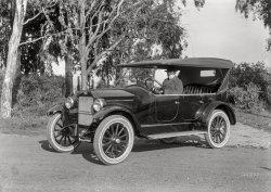 Glossy Gardner: 1922