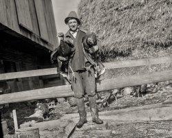 Day Turkeys: 1925