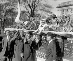 Banana Shortcake: 1925