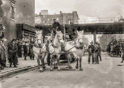 Fire Horses: 1913