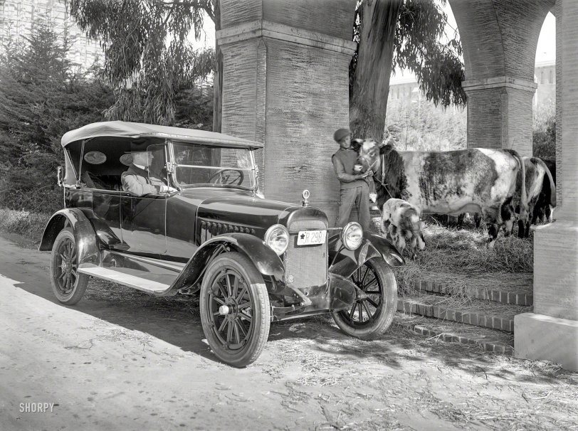 California Girls: 1919