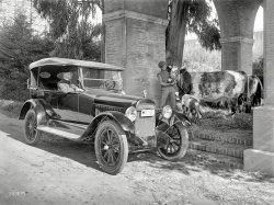 California Girls: 1919