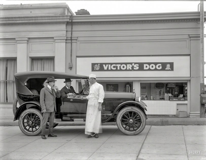 Dogs to Go: 1923