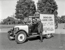 Dog-On Taxi: 1924