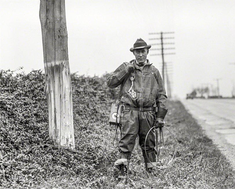 Pole Cat: 1929