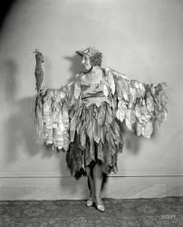 Two Birds: 1920s