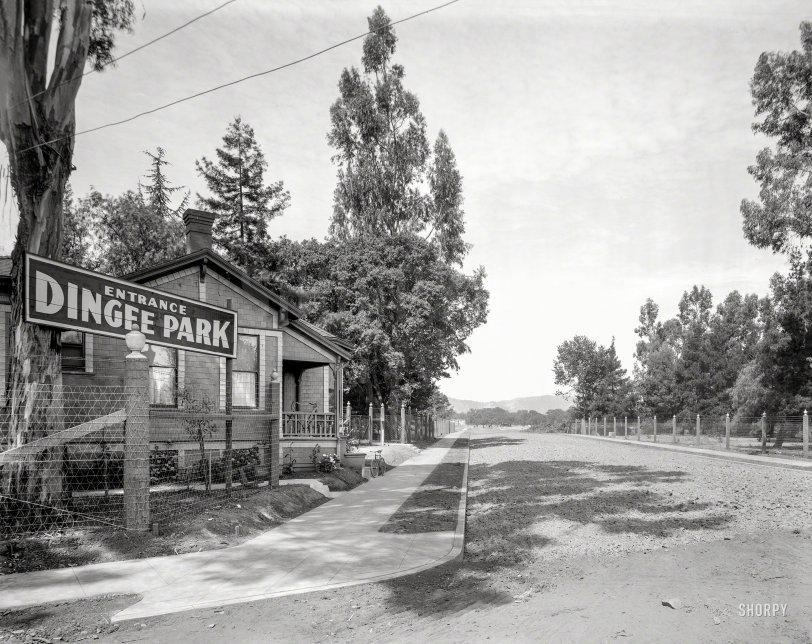 Dingee Park: 1909
