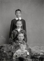 Family Sapling: 1907