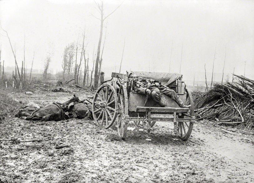 Mud and Guts: 1918