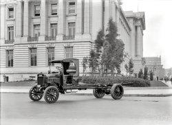 Tin and Bones: 1920