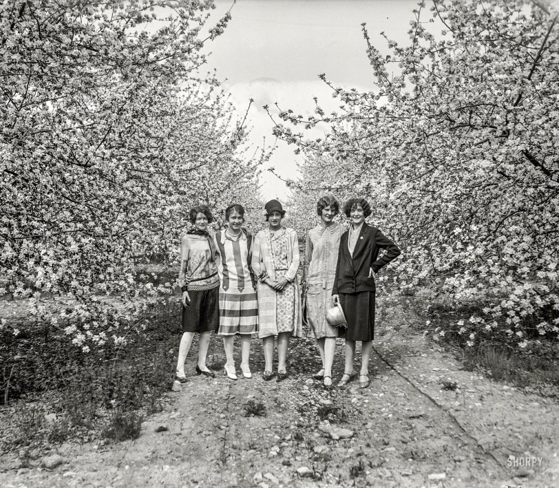 Spring Is Here: 1926