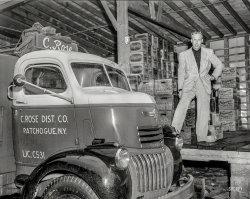 Wet Beer: 1948