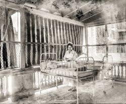 Porch Ward: 1919