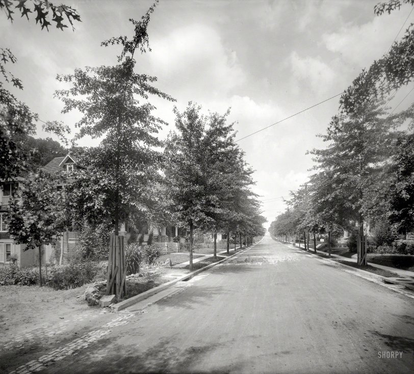 Cathedral Ave.: 1925