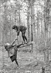 Limb to Limb: 1895