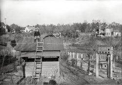 Free-Range Kids: 1895