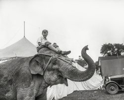 The Elephant Boy: 1927